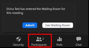 Participants Zoom